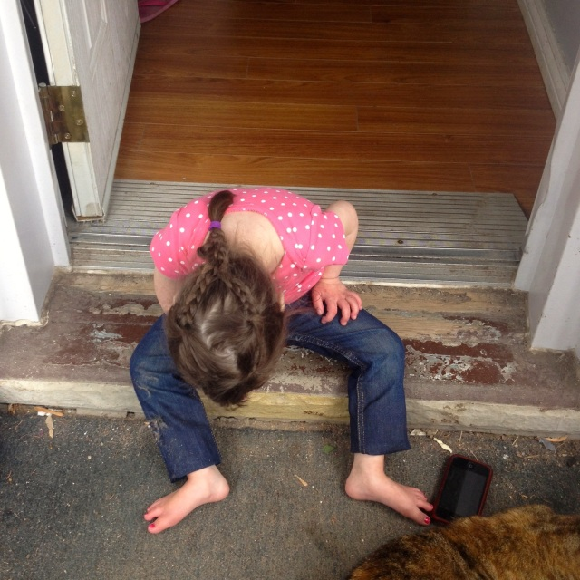 This little bug figured out how to get over the step and onto the porch floor without any momma assistance!